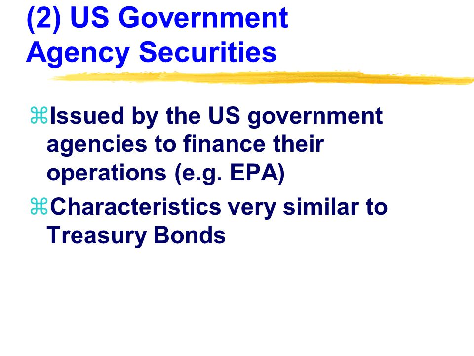 (2) US Government Agency Securities zIssued by the US government agencies to finance their operations (e.g.