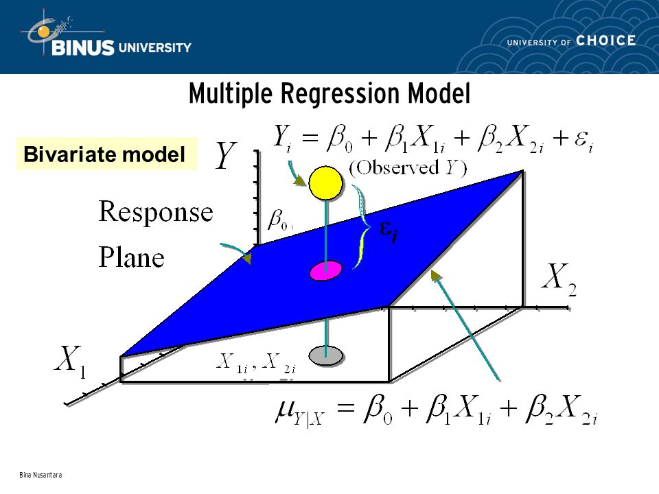 Bina Nusantara Multiple Regression Model Bivariate model