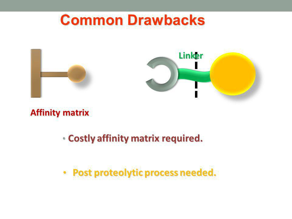 Costly affinity matrix required. Costly affinity matrix required. Post proteolytic process needed. Post proteolytic process needed. Linker Affinity ma