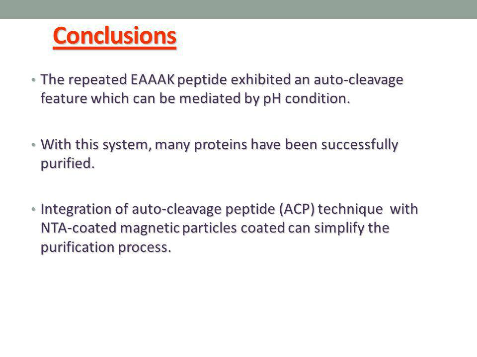 Conclusions The repeated EAAAK peptide exhibited an auto-cleavage feature which can be mediated by pH condition. The repeated EAAAK peptide exhibited