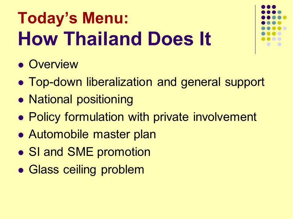 Possible Lessons Vietnam can learn from Thailand --National positioning & strategic marketing --Channels to work closely with the private sector --Making institutes & committees work better --Hints for master plan contents and procedure Vietnam can also learn from Thai weaknesses --Internalize technology .
