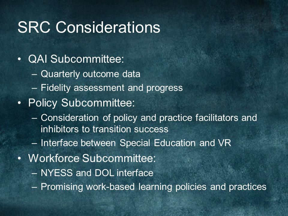 SRC Considerations QAI Subcommittee: –Quarterly outcome data –Fidelity assessment and progress Policy Subcommittee: –Consideration of policy and practice facilitators and inhibitors to transition success –Interface between Special Education and VR Workforce Subcommittee: –NYESS and DOL interface –Promising work-based learning policies and practices