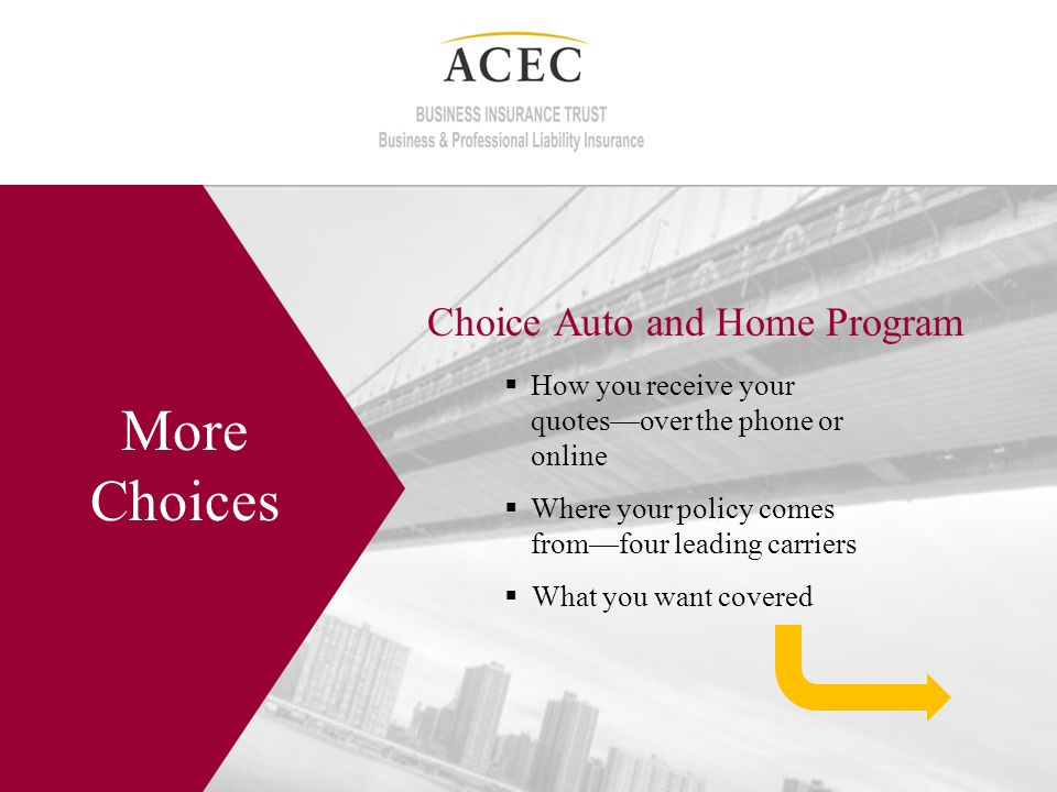 Choice Auto and Home Program More Choices How you receive your quotesover the phone or online Where your policy comes fromfour leading carriers What you want covered