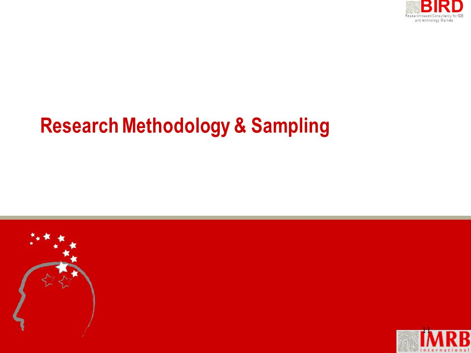 Research-based Consultancy for B2B and technology Markets BIRD 11 Research Methodology & Sampling