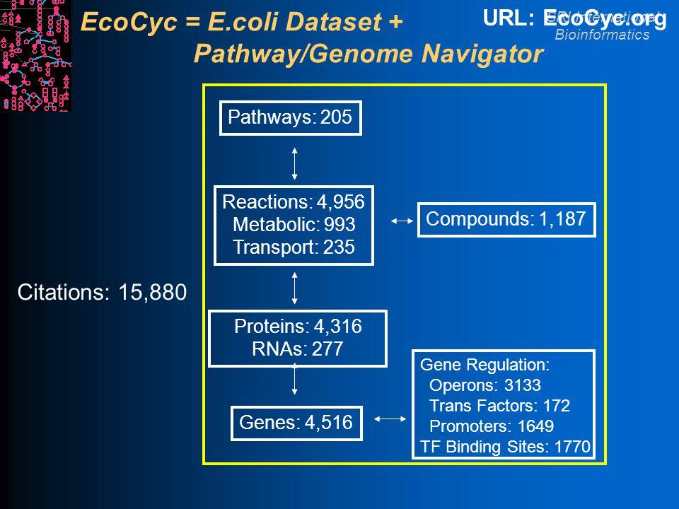 SRI International Bioinformatics EcoCyc = E.coli Dataset + Pathway/Genome Navigator Genes: 4,516 Proteins: 4,316 RNAs: 277 Reactions: 4,956 Metabolic: 993 Transport: 235 Pathways: 205 Compounds: 1,187 URL: EcoCyc.org Gene Regulation: Operons: 3133 Trans Factors: 172 Promoters: 1649 TF Binding Sites: 1770 Citations: 15,880