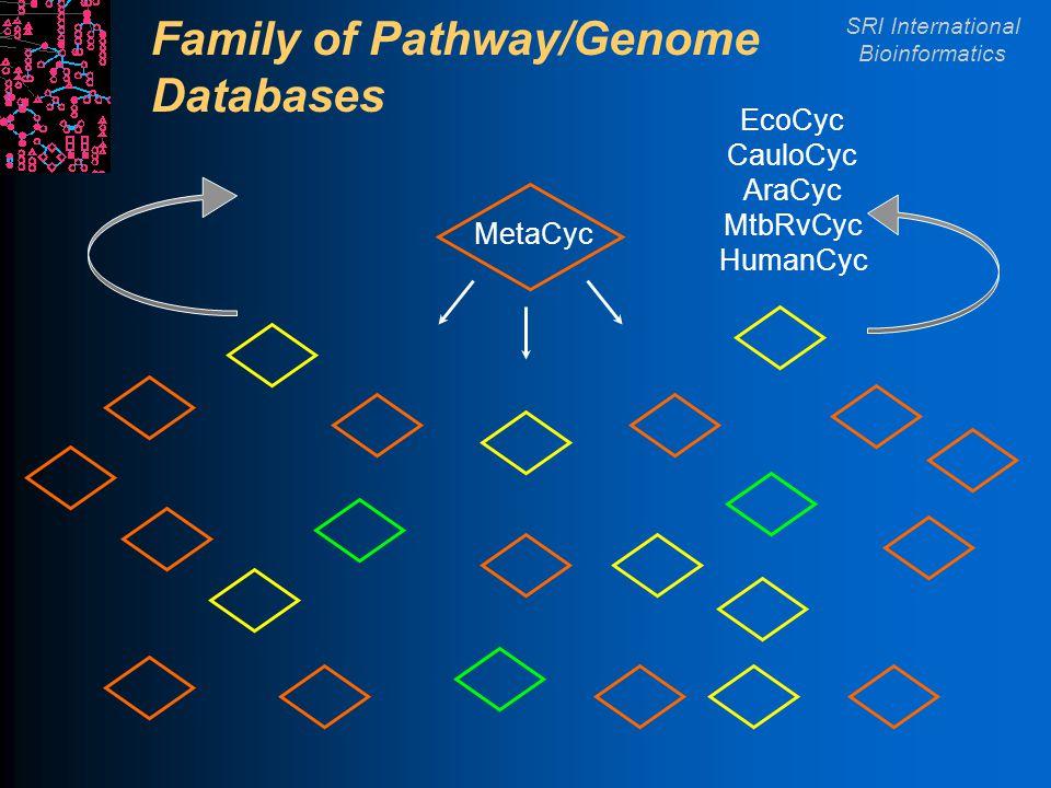 SRI International Bioinformatics Family of Pathway/Genome Databases MetaCyc EcoCyc CauloCyc AraCyc MtbRvCyc HumanCyc