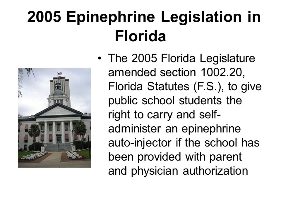 Epinephrine Policy Development in Florida A provision of the 2005 epinephrine legislation provided the State Board of Education and the Department of Health with joint rulemaking authority for the use of epinephrine auto- injectors at school Rule 6A-6.0251, Florida Administrative Code (F.A.C.), was promulgated in order to implement the epinephrine legislation (i.e., Kelsey Ryan Act) The Florida Department of Education, working in partnership with the Department of Health as well as public and private stakeholders, developed a technical assistance paper (TAP, 2006) to provide guidance to school districts for the development of local policy and procedures for the care of students with life-threatening allergies in accordance with the Kelsey Ryan Act and Rule 6A-6.0251, F.A.C.