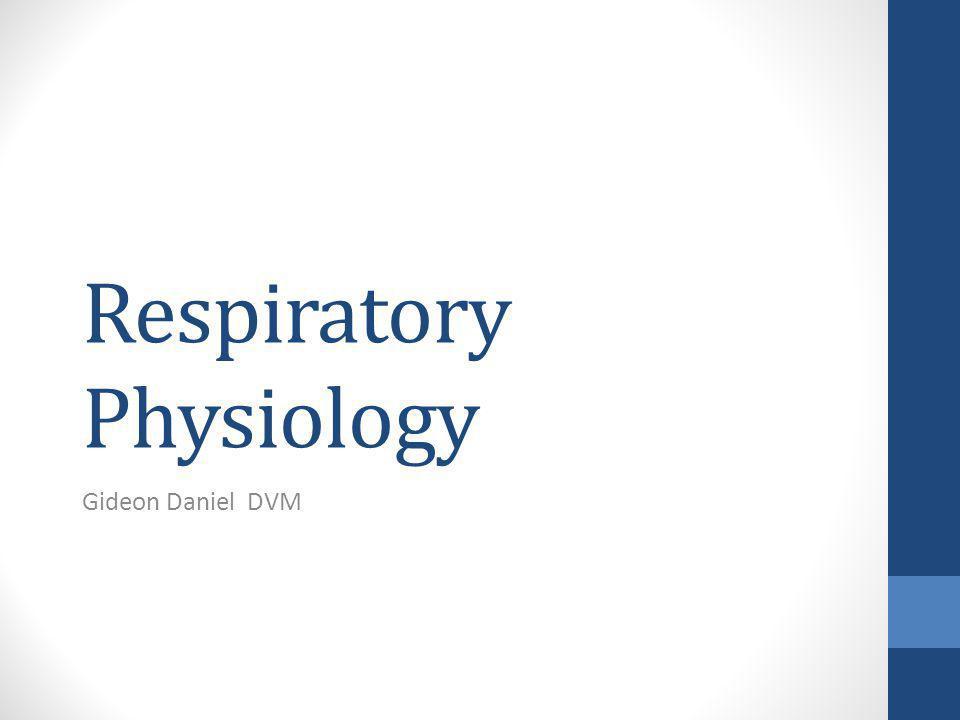 Respiratory Physiology Gideon Daniel DVM
