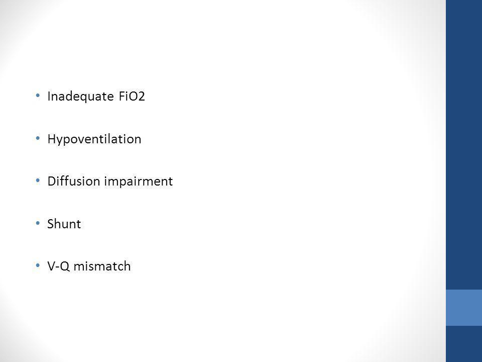 Inadequate FiO2 Hypoventilation Diffusion impairment Shunt V-Q mismatch