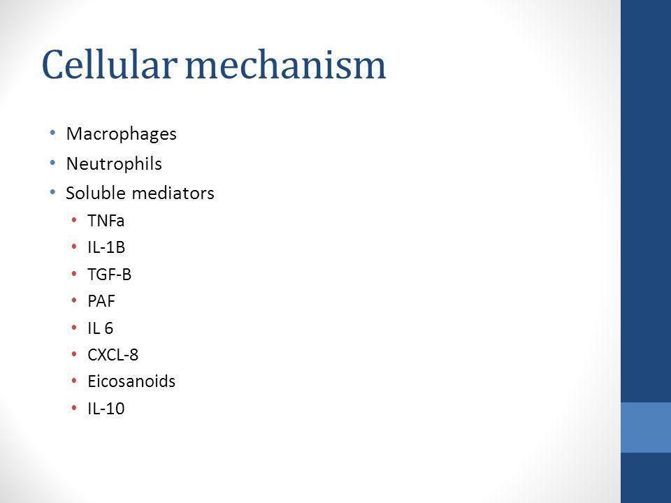Cellular mechanism Macrophages Neutrophils Soluble mediators TNFa IL-1B TGF-B PAF IL 6 CXCL-8 Eicosanoids IL-10