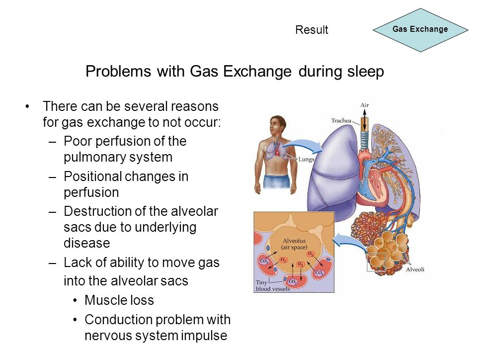 Problems with Gas Exchange during sleep Gas Exchange Result There can be several reasons for gas exchange to not occur: –Poor perfusion of the pulmona