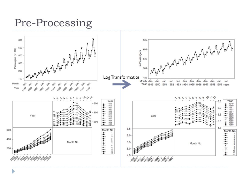 Log Transformation Pre-Processing