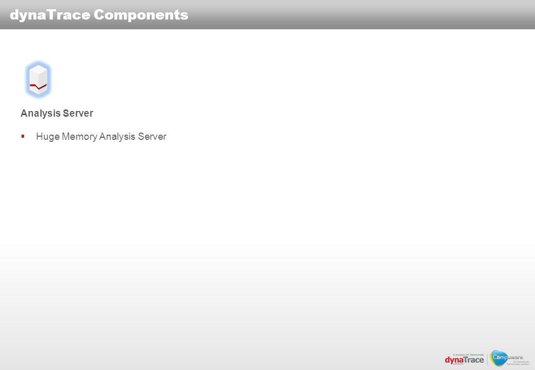 dynaTrace Components Analysis Server Huge Memory Analysis Server