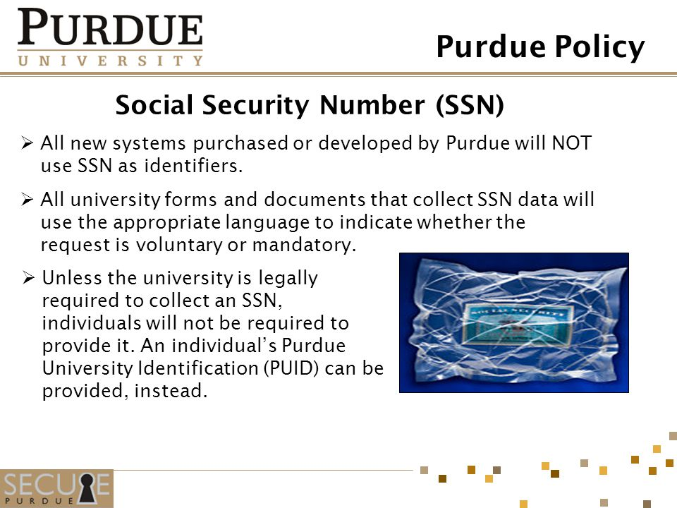 Social Security Number (SSN) All new systems purchased or developed by Purdue will NOT use SSN as identifiers. All university forms and documents that