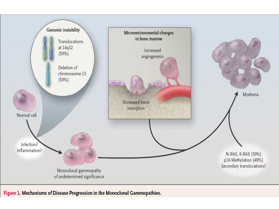 OPG/OCIF OC precursor OAF receptor (RANK) OSTEOCLAST ACTIVATION Osteoclast RANKL/OAF Osteoblast/ stromal cell /tumour cells/ myeloma Teitelbaum Science 2000