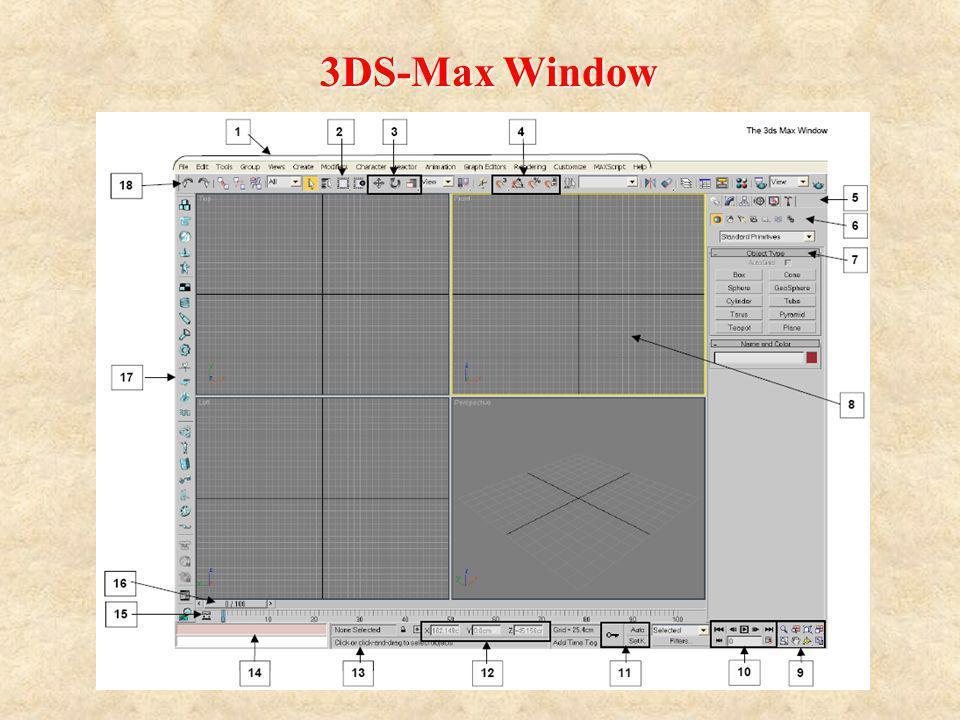3DS-Max Window