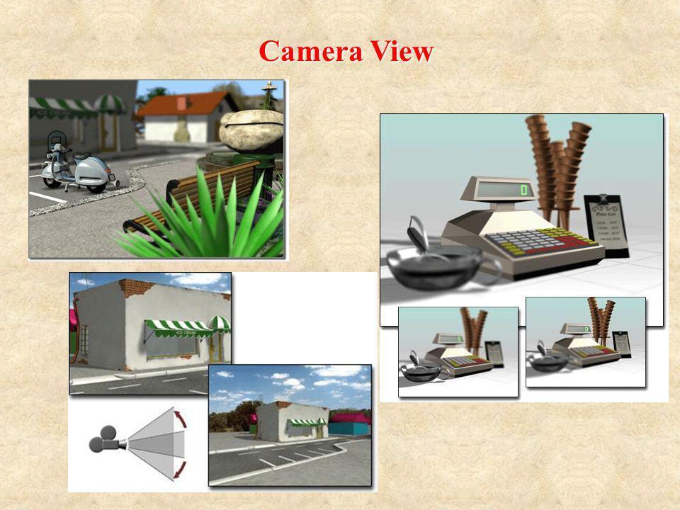 Camera View