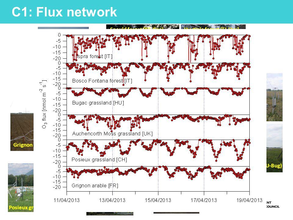 ~41.5 m M Coyle, CEH 2012 C1 Campaign: Bosco della Fontana, Mantova O3O3 CO 2 /H 2 O ~32 m ~24 m ~16 m ~8 m GRAEGOR O3O3 O3O3 O3O3 O3O3 CO 2 /H 2 O Gas inlet Gas inlets Gas inlet ~5 m Met : wind; rainfall (bucket & WXT); Temperature (RHT & APT); Direct/Diffuse PAR; Net.