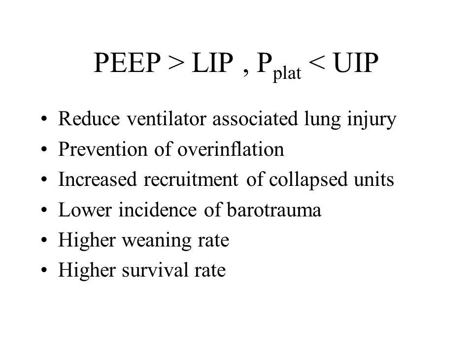 LIP UIP PV Loop in Acute Lung Injury