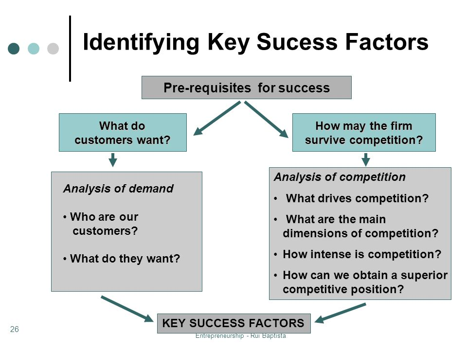 Entrepreneurship - Rui Baptista 26 Pre-requisites for success What drives competition? What are the main dimensions of competition? How intense is com