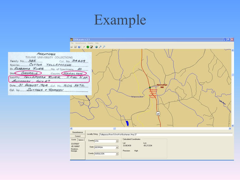 A Locality records automatically georeferenced as they enter the data store.