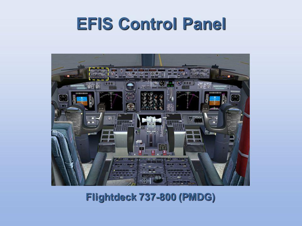 EFIS Control Panel Flightdeck 737-800 (PMDG)