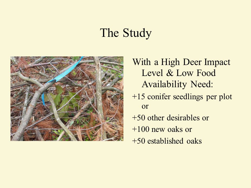 The Study With a High Deer Impact Level & Low Food Availability Need: +15 conifer seedlings per plot or +50 other desirables or +100 new oaks or +50 established oaks