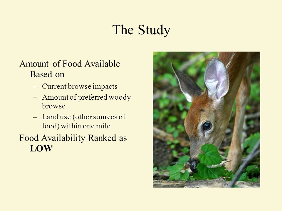 The Study Amount of Food Available Based on –Current browse impacts –Amount of preferred woody browse –Land use (other sources of food) within one mile Food Availability Ranked as LOW