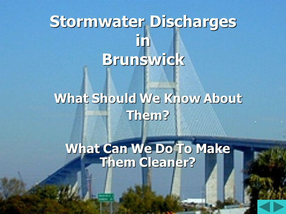 Stormwater Discharges in Brunswick What Should We Know About Them.