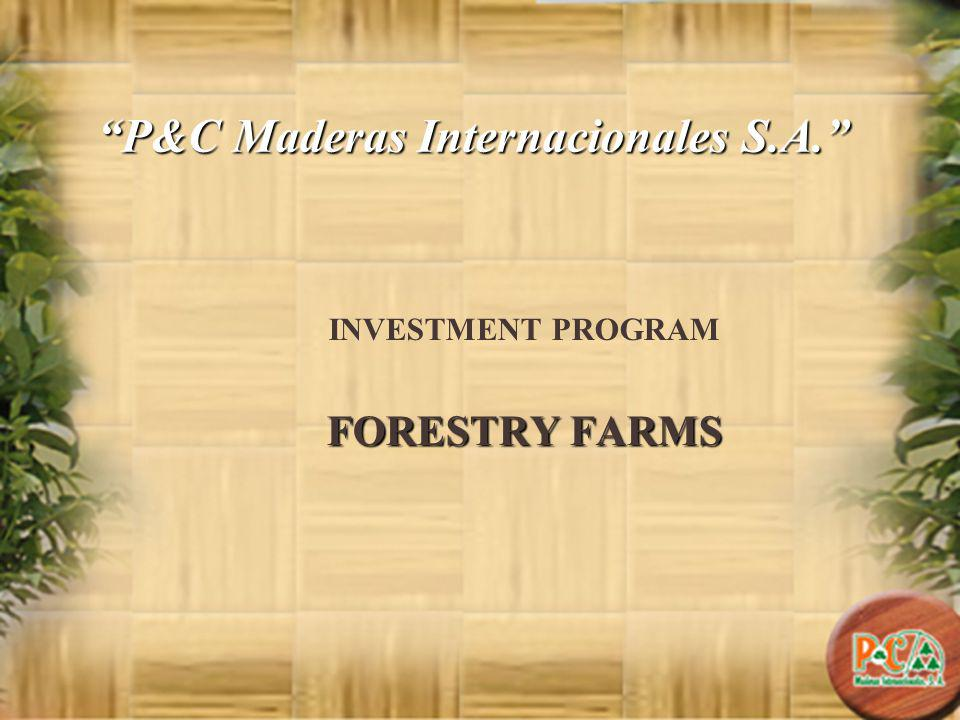 P&C Maderas Internacionales S.A. INVESTMENT PROGRAM FORESTRY FARMS