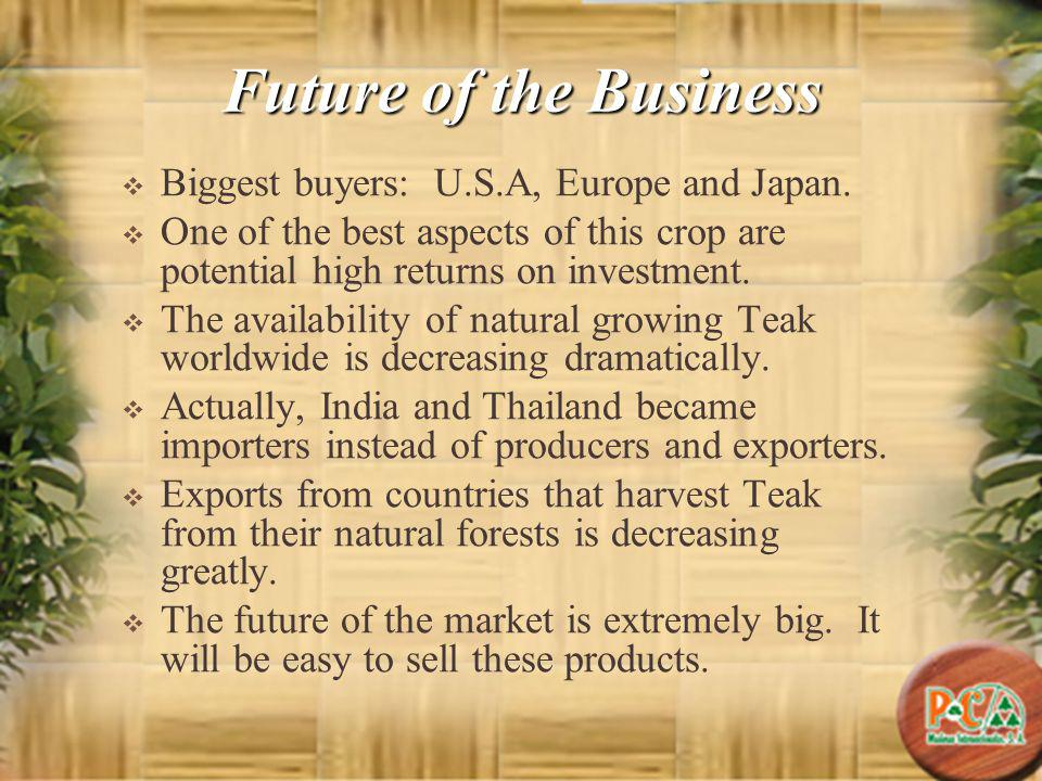 Future of the Business Biggest buyers: U.S.A, Europe and Japan. One of the best aspects of this crop are potential high returns on investment. The ava