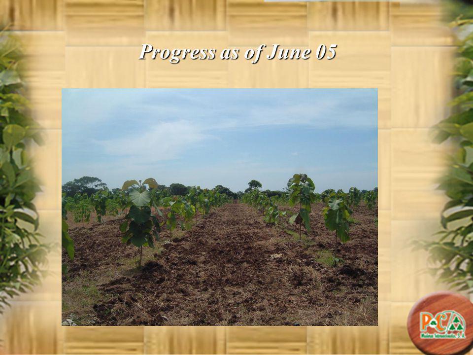 Progress as of June 05