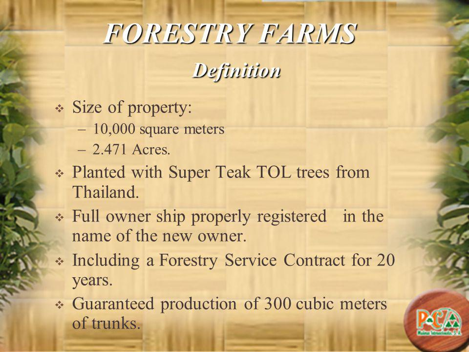 Private Resort This project will enable the forestry farm owners to enjoy himself at the P&C Private Resort, located just beside the Super Teak forest.