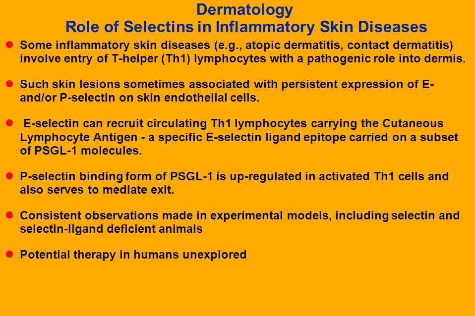 Dermatology Role of Selectins in Inflammatory Skin Diseases