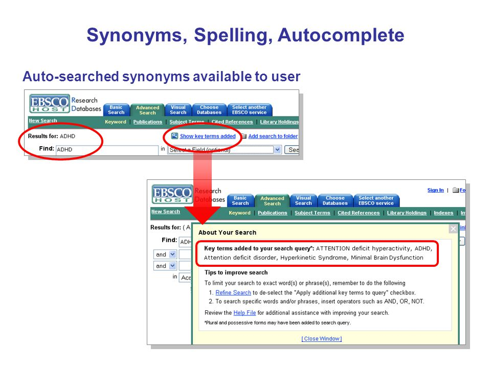 Auto-searched synonyms available to user Synonyms, Spelling, Autocomplete