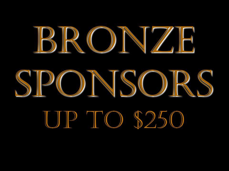 Bronze Sponsors Up to $250