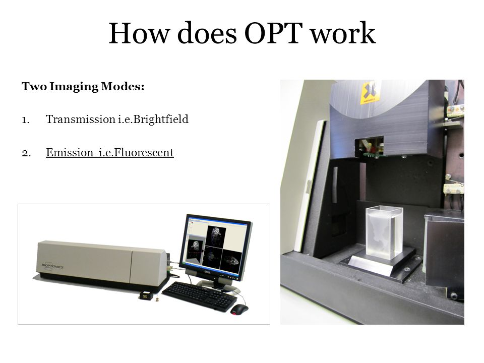 How does OPT work Two Imaging Modes: 1.Transmission i.e.Brightfield 2.Emission i.e.Fluorescent