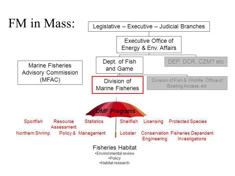 FM in Mass: Marine Fisheries Advisory Commission (MFAC) Division of Marine Fisheries Legislative – Executive – Judicial Branches Dept.
