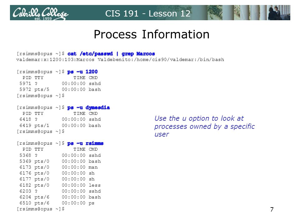 CIS 191 - Lesson 12 Process Information Use the u option to look at processes owned by a specific user 7