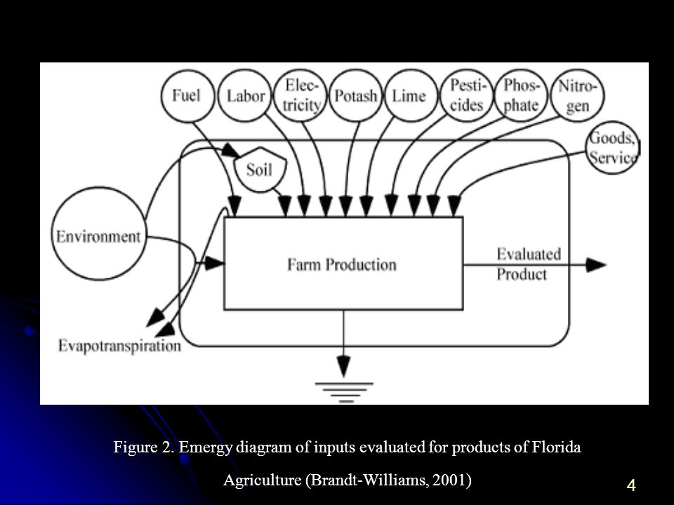 4 Figure 2. Emergy diagram of inputs evaluated for products of Florida Agriculture (Brandt-Williams, 2001)