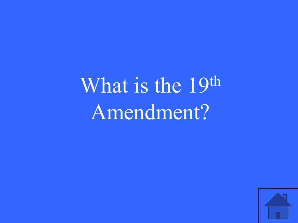 What is the 19 th Amendment