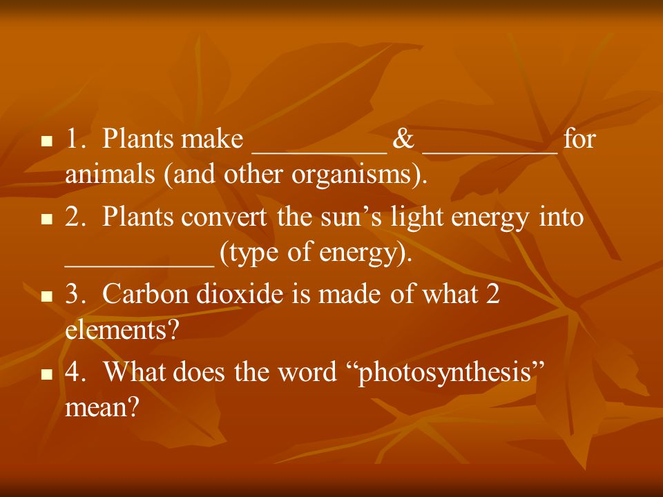 1. Plants make _________ & _________ for animals (and other organisms). 2. Plants convert the suns light energy into __________ (type of energy). 3. C