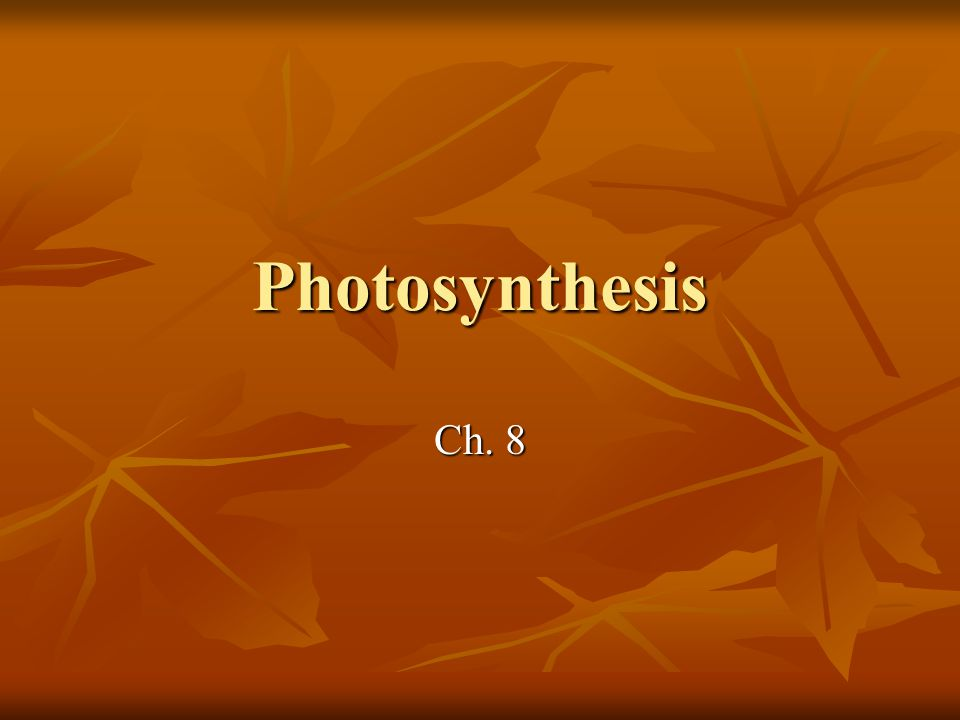 Photosynthesis Ch. 8