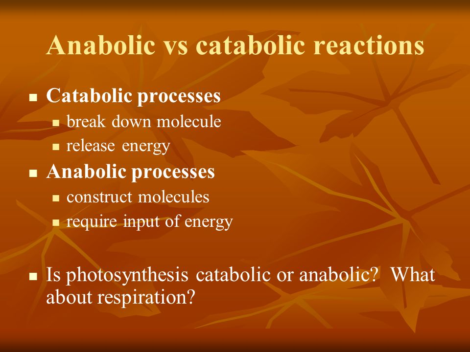 Anabolic vs catabolic reactions Catabolic processes break down molecule release energy Anabolic processes construct molecules require input of energy