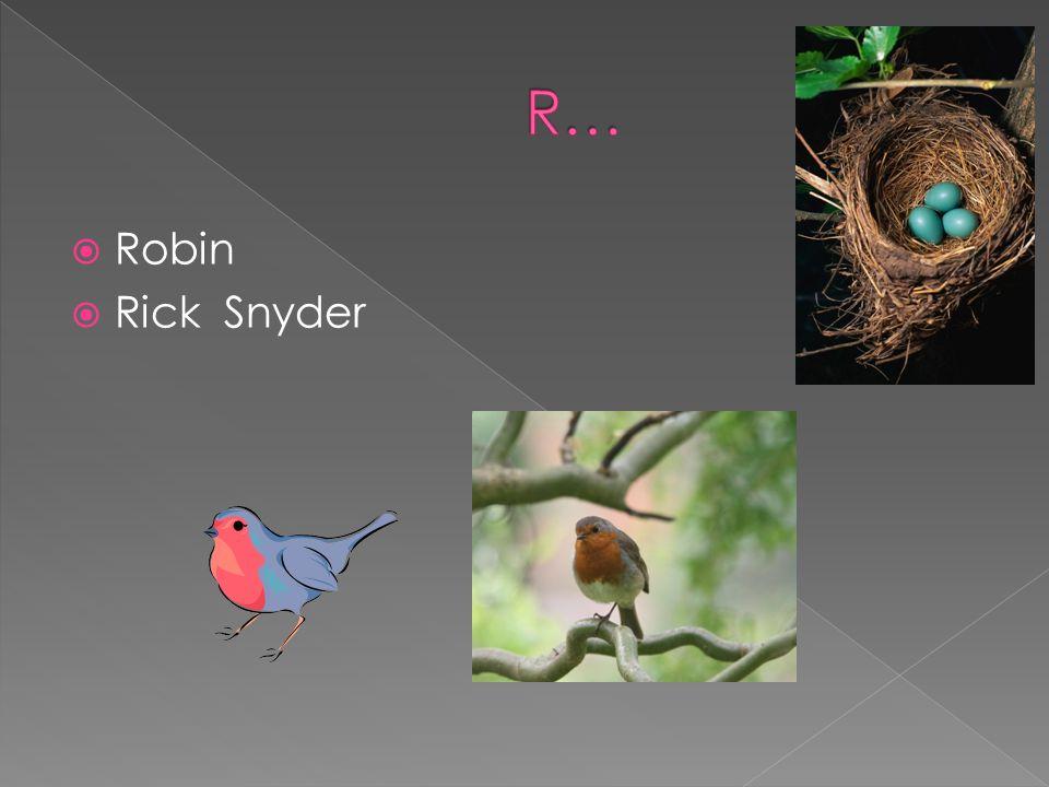 Robin Rick Snyder