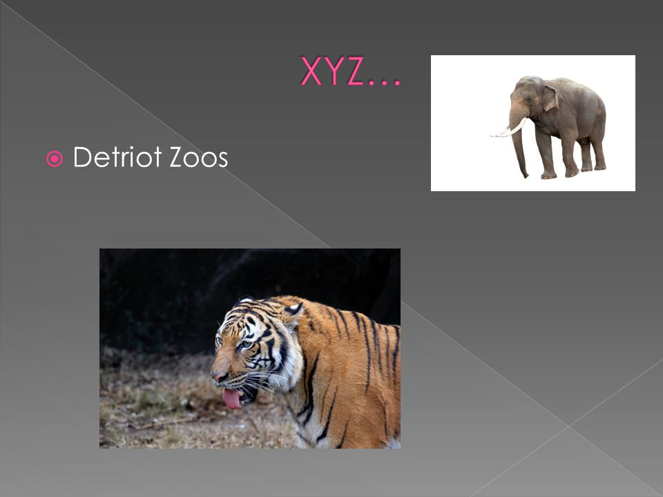 Detriot Zoos