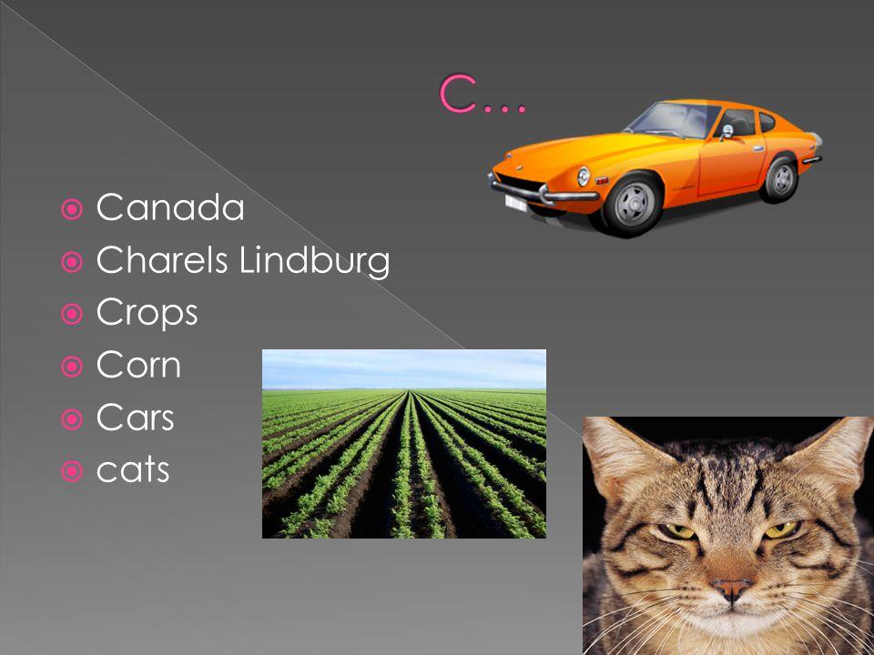Canada Charels Lindburg Crops Corn Cars cats