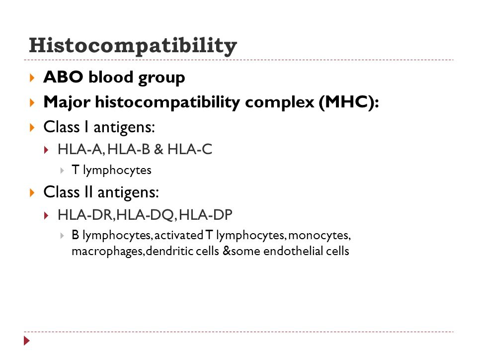 Histocompatibility ABO blood group Major histocompatibility complex (MHC): Class I antigens: HLA-A, HLA-B & HLA-C T lymphocytes Class II antigens: HLA