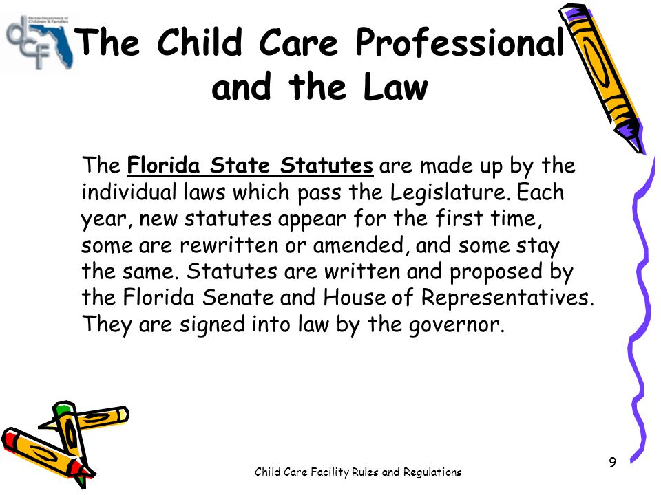 Child Care Facility Rules and Regulations 9 The Child Care Professional and the Law The Florida State Statutes are made up by the individual laws whic