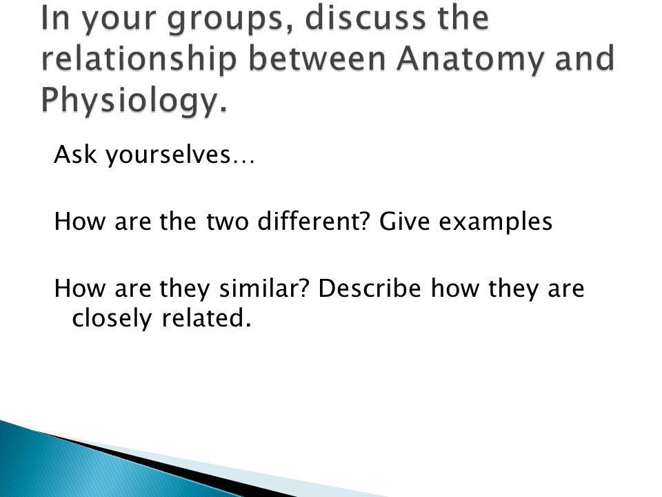 Ask yourselves… How are the two different? Give examples How are they similar? Describe how they are closely related.
